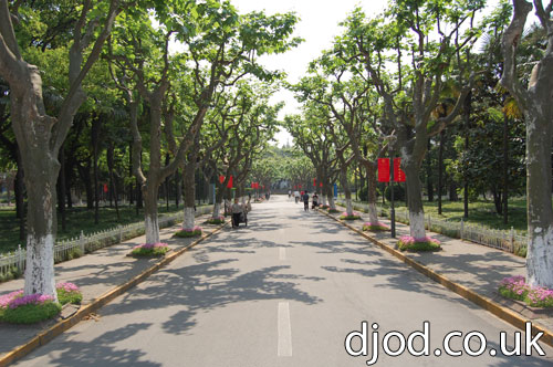 08-fudan-university-photographs