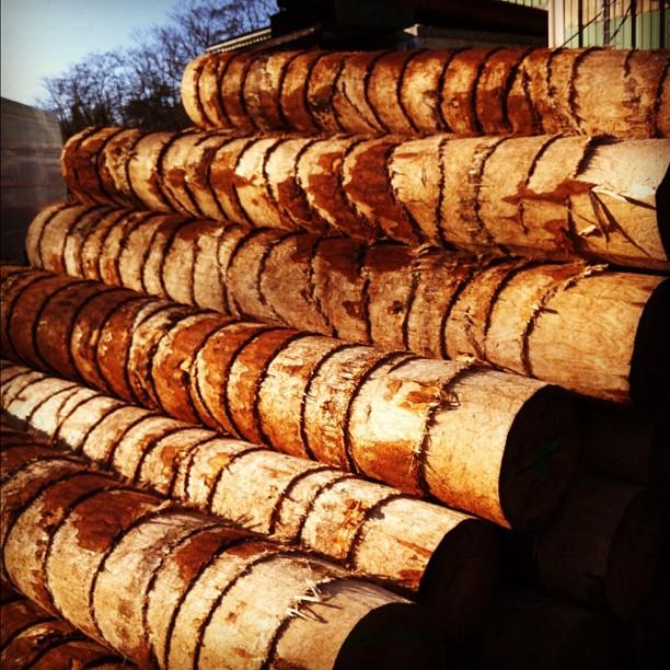 Got wood? #instagram #france