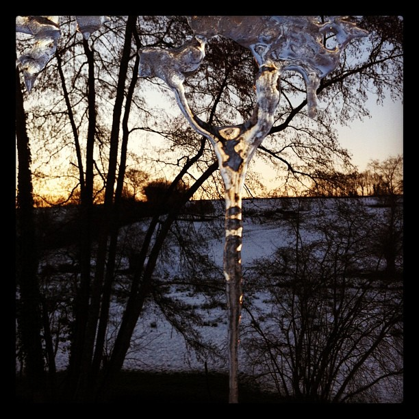 Super-icicle! #france #instagram #winter