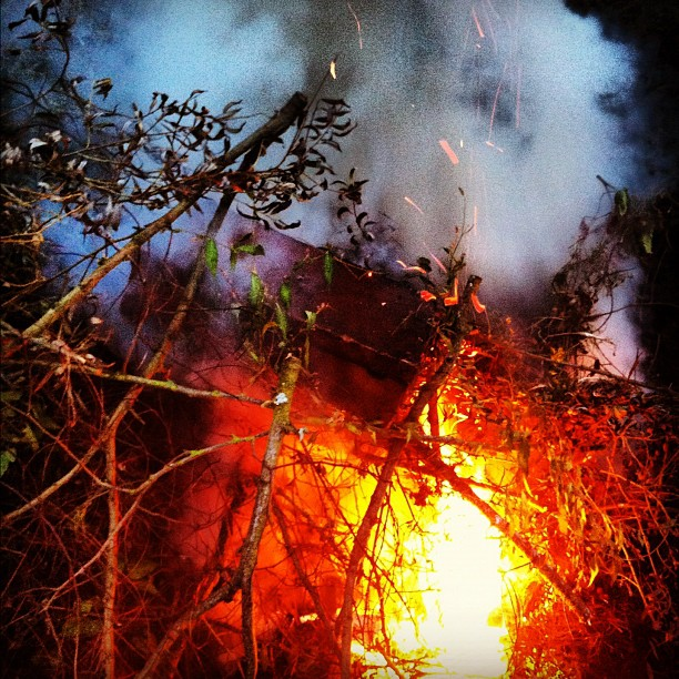 Photo - Last night's suitcase bonfire