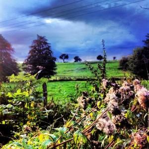 Photo – Autumn is no joke