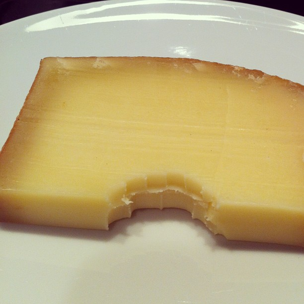 Photo - I will find you, cheese thief
